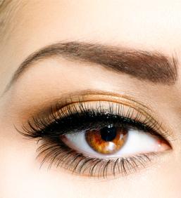 Eye brow restoration